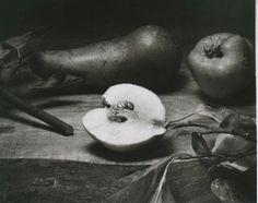 A Still Life Collection: John Stewart