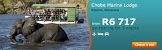 Chobe Marina Lodge - Kasane, Botswana. Digital Media, Check It Out, Africa, Community, Night, Holiday, Vacations, Holidays, Afro
