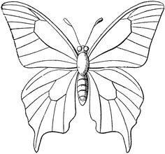 Butterfly Coloring Pages 002   Printable butterfly, Butterfly and ...