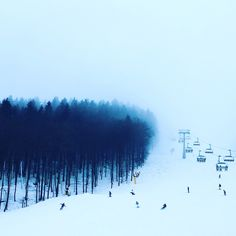 Soft Fog & Winter Vibes In Snowy Sauerland, Germany