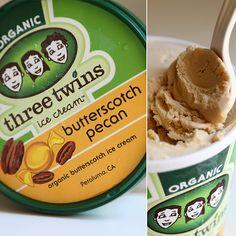 Three Twins ice Cream taste test —make sure to try their vanilla bean ice cream sandwich!