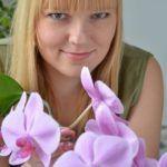 Orchideen Lexikon – Pflege und Standort