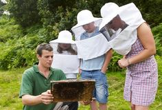 Learn about bees and bee keeping