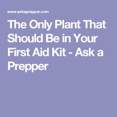 The Only Plant That Should Be in Your First Aid Kit - Ask a Prepper
