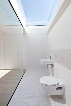天窓付きの超開放的なバスルームのトイレ