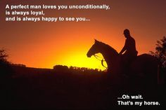 A perfect man loves you unconditionally, is always loyal, and is always happy to see you... Oh wait. That's my horse