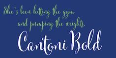 Check out the Cantoni font at Fontspring.
