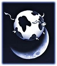 """A spherical cow jumps over the moon...Spherical cow is a metaphor for highly simplified scientific models of reality.  The phrase comes from a joke about theoretical physicists:         """"Milk production at a dairy farm was low so the farmer wrote to the local university, asking help from academia. A multidisciplinary team of professors was assembled, headed by a theoretical physicist, and two weeks of intensive on-site investigation took place. The scholars then returned to the university…"""