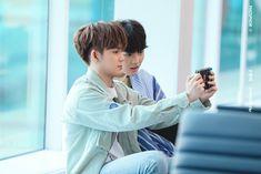 Yoshi, Golden Treasure, Hyun Suk, Fandom, Cute Panda, Incheon, Treasure Boxes, Yg Entertainment, Boy Groups