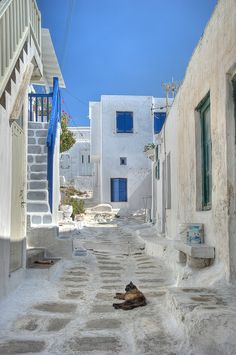 The streets of Mykonos, Greece. Mykonos Blue trimmings and ferrel cats about. Places Around The World, Oh The Places You'll Go, Travel Around The World, Places To Travel, Places To Visit, Around The Worlds, Travel Destinations, Dream Vacations, Vacation Spots