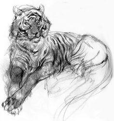 Terrific Tiger
