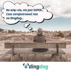 DingDog sprawia radość nie tylko psom. I Wasze życie może zmienić  #DingDog Movies, Movie Posters, Instagram, Art, Art Background, Films, Film Poster, Kunst, Cinema