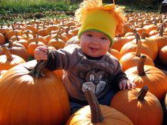 pumpkin patch photo?