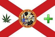 florida medical marijuana flag hbtv hemp beach tv 2015