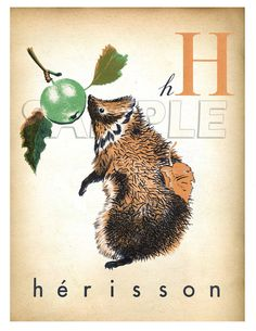 Vintage French Letter Print - H is for herisson (hedgehog) French Alphabet, Vintage School, Cute Creatures, Vintage Travel Posters, Vintage Children, French Vintage, Altered Art, Illustration Art, Art Prints