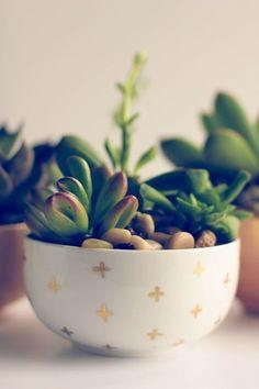 DIY succulent planters   DIY Crafts   Crafting   #diy #diycrafts #crafts #handmade   www.starlettadesigns.com