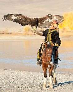 What is it like to get sick while you travel in Mongolia? It happened to Meg who experienced what it is like to balance between life and death in Mongolia. Mongolia, Eagle Hunting, Foto Fantasy, 3d Foto, Golden Eagle, Black Books, Birds Of Prey, Tibet, World Cultures