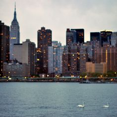 """""""The present in New York is so powerful that the past is lost."""". Visit www.couponscrate.com for coupons! :) Repin and Like!"""