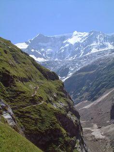 Lower Grindelwald Glacier, Grindelwald, Bernese Oberland, Switzerland