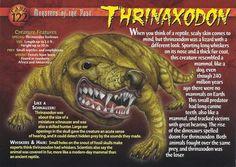 Dinosaur of the Week: Armchair Paleontology: Thrinaxodon front Prehistoric Wildlife, Prehistoric World, Prehistoric Creatures, Mythological Creatures, Reptiles And Amphibians, Mammals, Names Of Dinosaurs, Dinosaur Facts, Extinct Animals