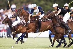 Polo is huge in Argentina. La Dolfina Polo Team was founded in 1997 by one of Argentina's most famous polo players, Adolpho Cambiaso.