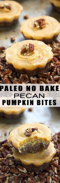 paleo no bake pecan pumpkin bites.