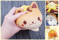 Amazon Coupon : 05OffHamee Nyan Pancake squishies are available in the following scents: golden brown with an original bread scent, golden with dark brown stripes and a Chocolate Scent, or Pink with a Strawberry scent. What's more, they're nice and big making them extra fun to squish!  #Hamee #ibloom #squishy #squeeze Please Like!
