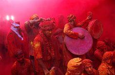 Image: Festival of Colours (© REUTERS/Vivek Prakash)