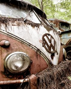 Pink VW Bus in the woods Photograph on Etsy, $15.00