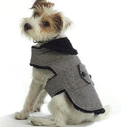 Dog Coat Pattern, Butterick 4885, X-Small, Small, Medium, Large, New and Uncut Sewing Pattern for Pets