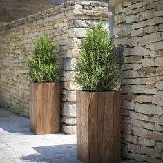 Teak Garden Planters , Cubes or Tall Squares: translation missing: en.style.garden-.modern Garden by Ingarden Limited