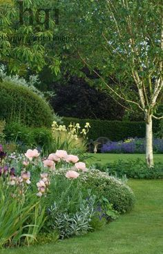 Betula tree in lawn border of Iris and Papaver with Lutyens bench and bird table focal point. House, Suffolk Marcus Harpur