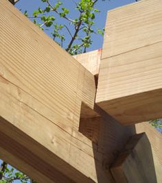 About Us - Thomas Tree Carpentry