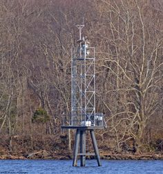The Riverton, NJ, (across from Pennypack Park on the Delaware) birds are back. Note the female atop the range marker in the nest. Her mate is down below on the left rail, eating a fish. (2nd April)