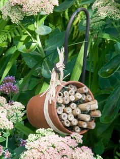 How to Make a Bee Hotel. Bees improve flower pollination How to make a bee hotel Bug Hotel, Mason Bees, Bee House, Birds And The Bees, Bee Friendly, Planting Vegetables, Vegetable Garden, Save The Bees, Plantation