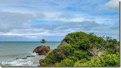 Praia de Tambaba, Conde - Paraíba