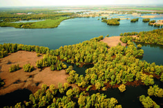 The Kopački Rit is the biggest natural wetlands in Europe and the birdlife is spectacular. This enormous nature park is located around 15km north of Osijek, Slavonia, Croatia where the Danube and Drava rivers flow into one another