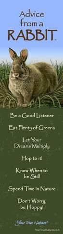 Mothering Advice from a Rabbit: Be a Good Listener and Eat Plenty of Greens. Your True Nature