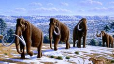 Ice Age-Results in The Entire World Being Covered in Snow & Ice As Well As Causing The Extinction of Several Animals