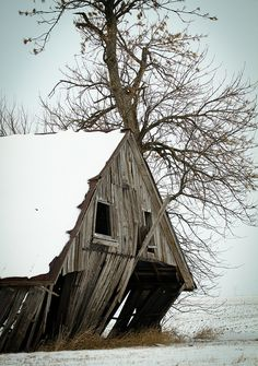 rain-storms:Tree Next to a Barn by rrazz67(off more than on) on Flickr.  #photography