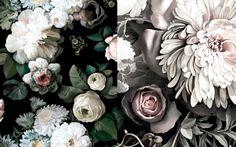 Get the look: spring blooms gallery - Vogue Living Wallpaper by Ellie Cashman. Dark Floral and Dark Floral II Black