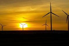 4 Green Technologies That Are Actually Selling