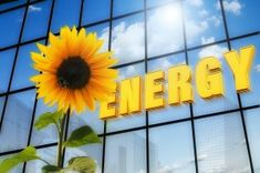Solar Energy Tips To Help You Go Green. If you are looking to reduce your energy consumption, solar energy is the way to go. Solar energy lets you get energy from the sun. What Is Energy, Energy Use, Solar Energy, Save Energy, Solar Power, Solar Companies, Energy Companies, Types Of Renewable Energy, Energy Bill