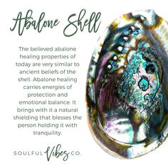 Medium Abalone Shell Great for cleansing, and burning herbs safely. Perfect for burning sage & Palo Santo and even other herbs Also used to put burning cleansing stick out along with storing them after use.
