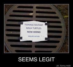 Teenage Mutant Nostalgia Power