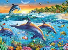 Collector Art jigsaw puzzle series features renowned artists and popular themes. Dolphin Bay puzzle has 500 uniquely-shaped pieces and measures 18 x 24 when complete. Featuring artwork by Adrian Chesterman. Dolphin Art, Sea Dolphin, Dolphin Painting, Wale, 5d Diamond Painting, Cross Paintings, Resin Paintings, Sea World, Painting Patterns