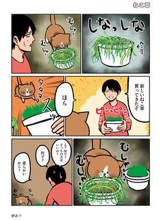 Cat Comics, Animals And Pets, Peanuts Comics, Manga, Cats, Funny, Pictures, Pets, Photos