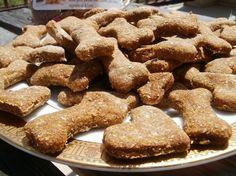 Half Pound Bag : Homemade Organic & Natural Pumpkin Pie Dog Treats