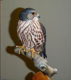 Merlin - carved by Greg Pedersen Carving Wood, Wood Carvings, Merlin Bird, Mini Barn, Downy Woodpecker, Whittling Wood, Wood Oil, Wildlife Art, Art Paintings