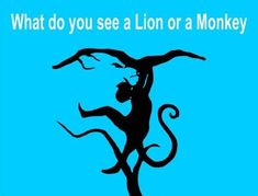 Monkey or Lion Optical Illusion